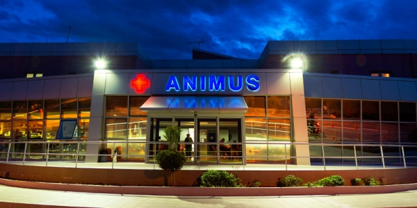 ANIMUS Center